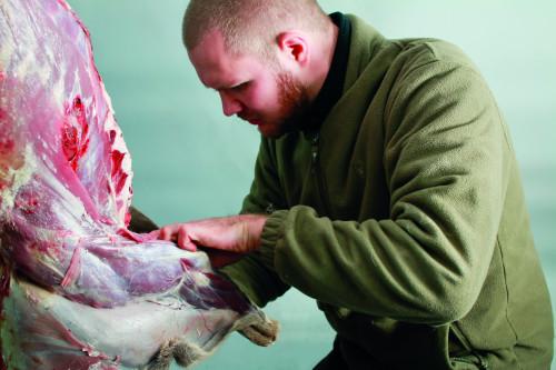 Als Haut Gout bringt er Hobbyköchen Wilfleisch näher.